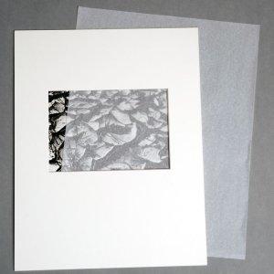 画像1: インターリビングティッシュ/11x14/100枚入り